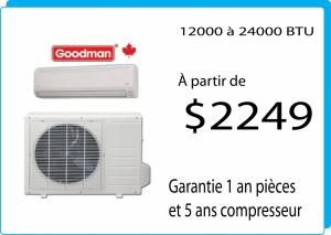 goodman2